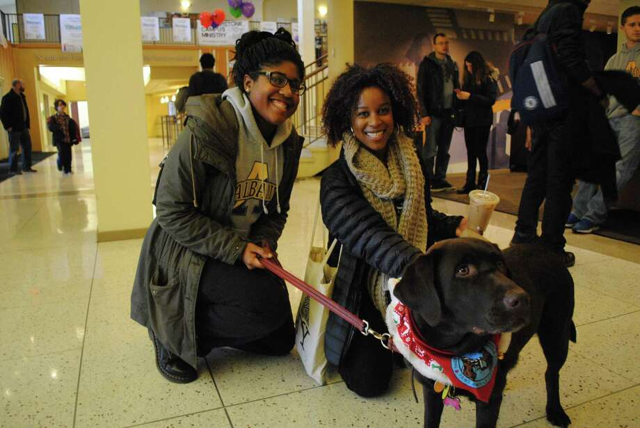Were you Seen de-stressing with the therapy dogs before finals week at UAlbany on Saturday, Dec. 13, 2014? Photo: Michelle Checchi