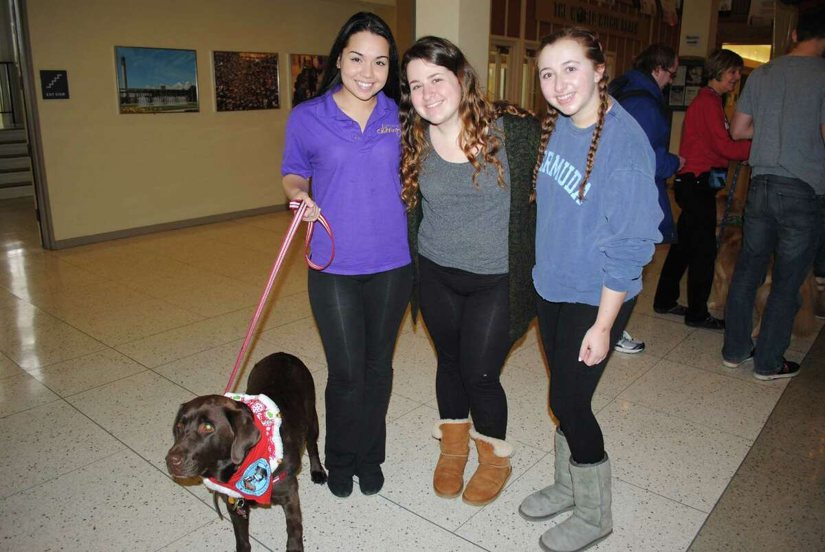 Were you Seen de-stressing with the therapy dogs before finals week at UAlbany on Saturday, Dec. 13, 2014?