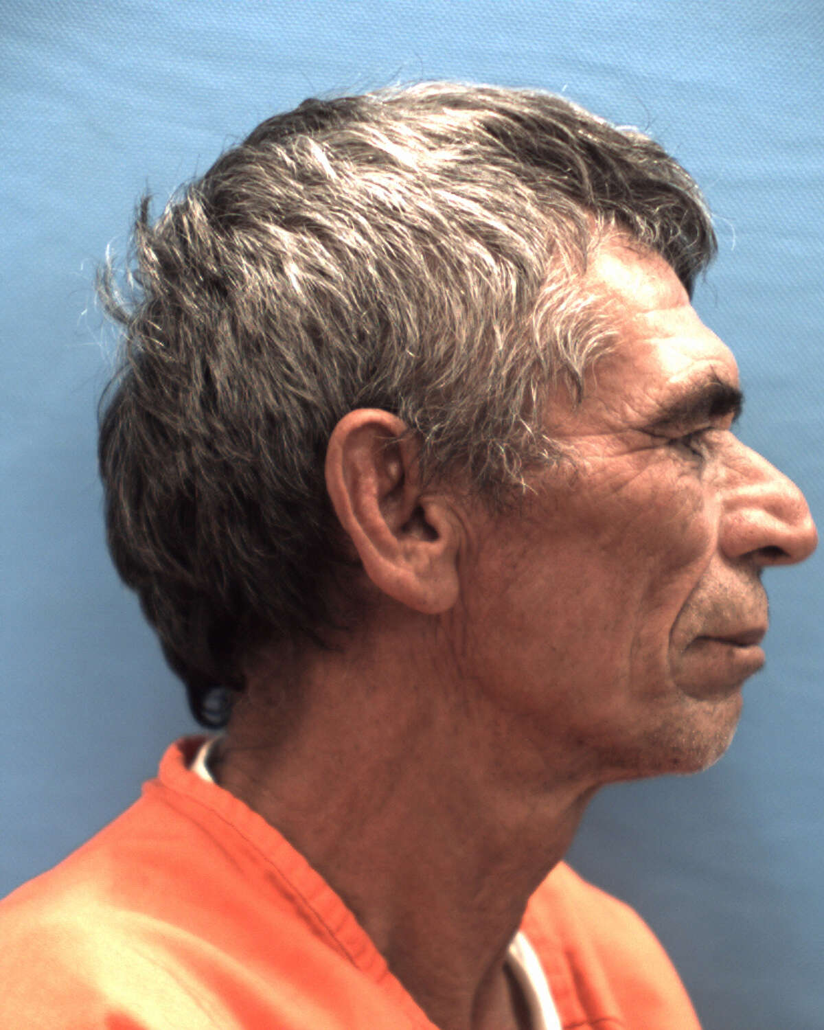 A 61-year-old San Marcos man pleaded guilty Monday to engaging in prohibited sexual conduct with his niece whom he later married. Esteban Chavez Castillo will serve 17 years in prison, the Seguin Gazette reported.