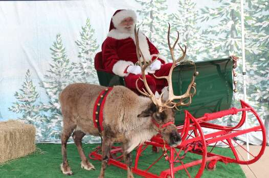 Meet a reindeerSunday, Dec. 21Santa Claus and one of his reindeer will make a stop at the Children's Museum of Houston this weekend. Don't forget your camera. You'll want a selfie with Santa.When: noon-4 p.m. Where: 1500 BinzTickets: $9Information: cmhouston.org Photo: Children S Museum Of Houston