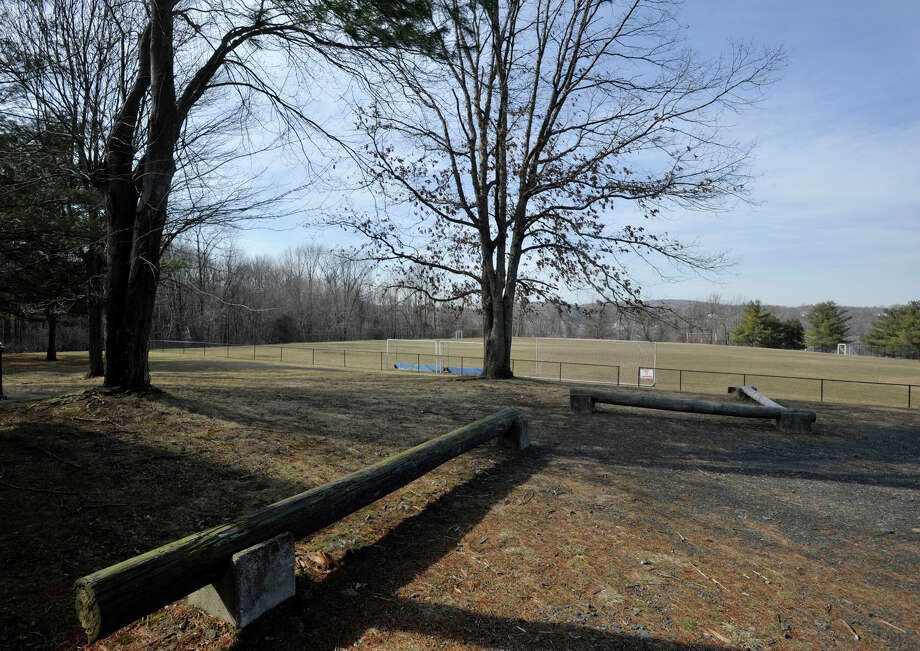 Subway co-founder Peter Buck purchased this 13-acre field off Old Ridgebury Road from the city of Danbury for $3.2 million. Buck intends to build a warehouse on the land to store personal property. Photo: Contributed Photo / The News-Times Contributed