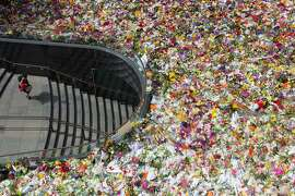 SYDNEY, AUSTRALIA - DECEMBER 18:  A view from the roof of Commercial Travellers Club building in Martin Place of the thousands of floral tributes for deceased hostages Tori Johnson and Katrina Dawson on December 18, 2014 in Sydney, Australia. Sydney siege gunman Man Haron Monis, was shot dead by police in the early hours of Tuesday morning after taking hostages at the Lindt Chocolat Cafe in Martin Place. Two other people died, 33-year-old cafe manager Tori Johnson and 38-year-old Sydney barrister Katrina Dawson.  (Photo by Cole Bennetts/Getty Images) *** BESTPIX ***