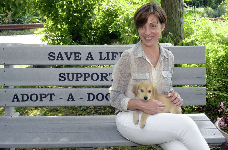 Holly Alexander's new SavAdate company will help nonprofits such as Adopt-A-Dog in Armonk, where Alexander is pictured with rescue dog Spike. Photo: Contributed Photo By Bob Rozycki, Contributed Photo / Greenwich Time Contributed