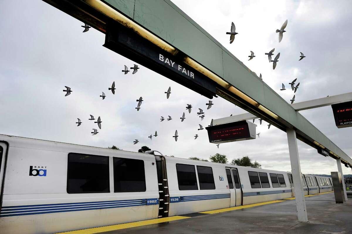 Birds fly above a BART train at Bay Fair Station.