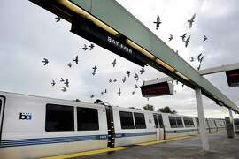 Birds fly above a BART train at Bay Fair Station. The station had 31 violent crimes in the first 10 months of 2014, up from 20 in the same period of 2013.