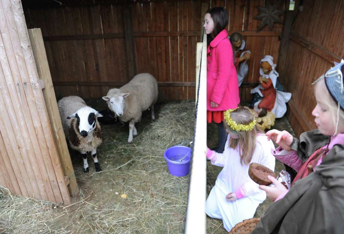 Tessa Laffan, left, 9, of Greenwich, Sarah Mickley, center, 11, of Old Greenwich, and and Lara Olmsted, 8, of Riverside, feed sheep insided a stable during the live nativity at First Congregational Church in Old Greenwich, Conn. Sunday, Dec. 21, 2014. Church members dressed as Mary, Joseph, kings and shepherds, complete with live sheep as they sang Christmas carols before a small audience outside the church.