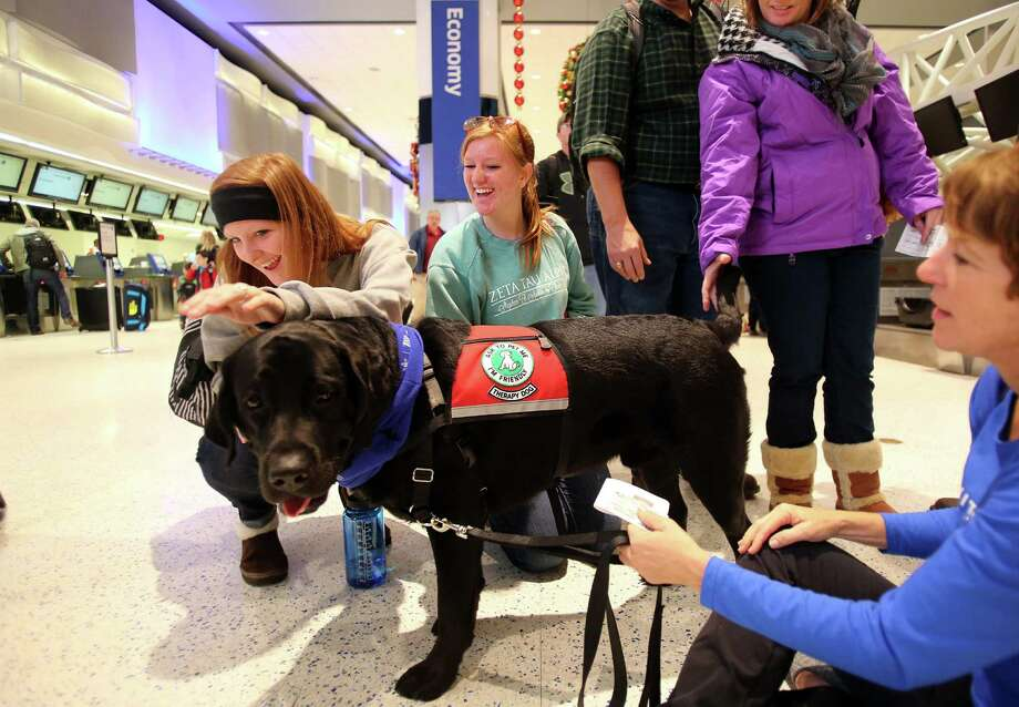 Leah, Calli, Max and Susan Simnitt pet 'Mo' as United Airlines offers holiday cheer for passengers at Terminal C by inviting therapy dogs to comfort passengers traveling through Houston George Bush Intercontinental Airport (IAH) on Monday, Dec. 22, 2014, in Houston. Photo: Mayra Beltran, Houston Chronicle / © 2014 Houston Chronicle