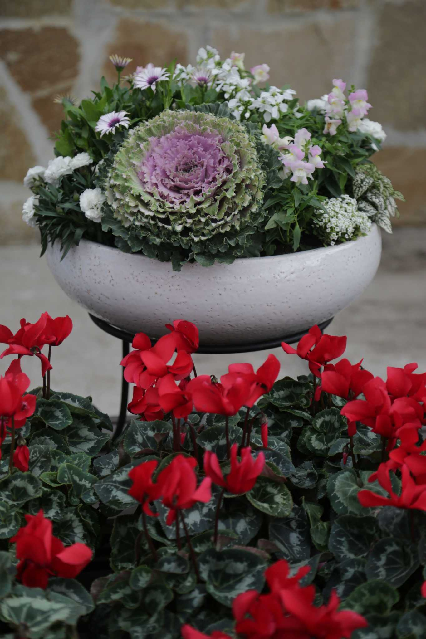 Create an instant landscape in a winter container garden ...