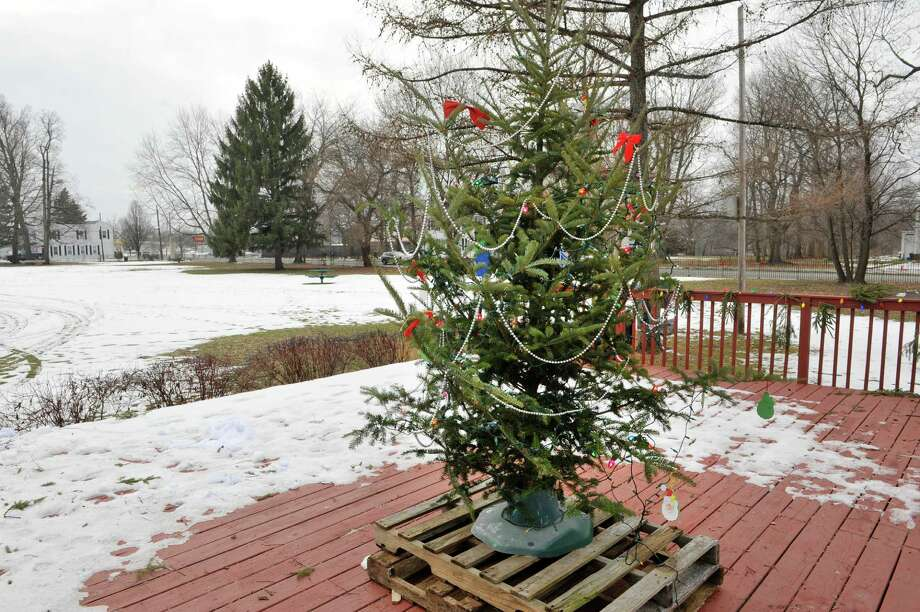 A view of the Christmas tree in Powers Park on Monday, Dec. 22, 2104, in Lansingburgh, N.Y.   This tree is a replacement for a tree which was destroyed by vandals.  (Paul Buckowski / Times Union) Photo: Paul Buckowski / 00029962A