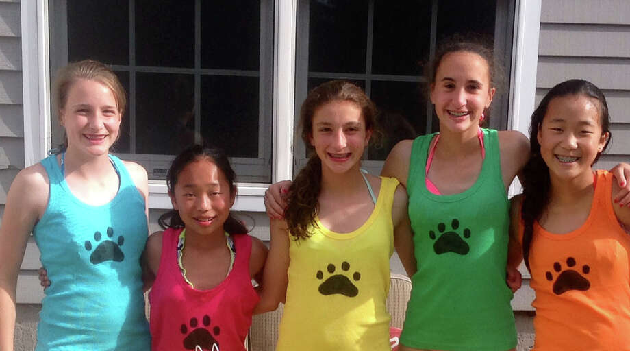 Members of Girl Scout Troop 50711 in Bethel are close to realizing their dream of creating a dog park in town. They are from left,  Allie Hermansen, Audrey Garcia, Kaitlyn DeLuca, Katie Galvin and Sanni Cohn; all are eighth-graders at Bethel Middle School. Photo: Contributed Photo / The News-Times Contributed