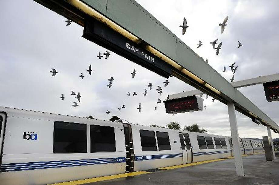 BART is a bird-friendly place.