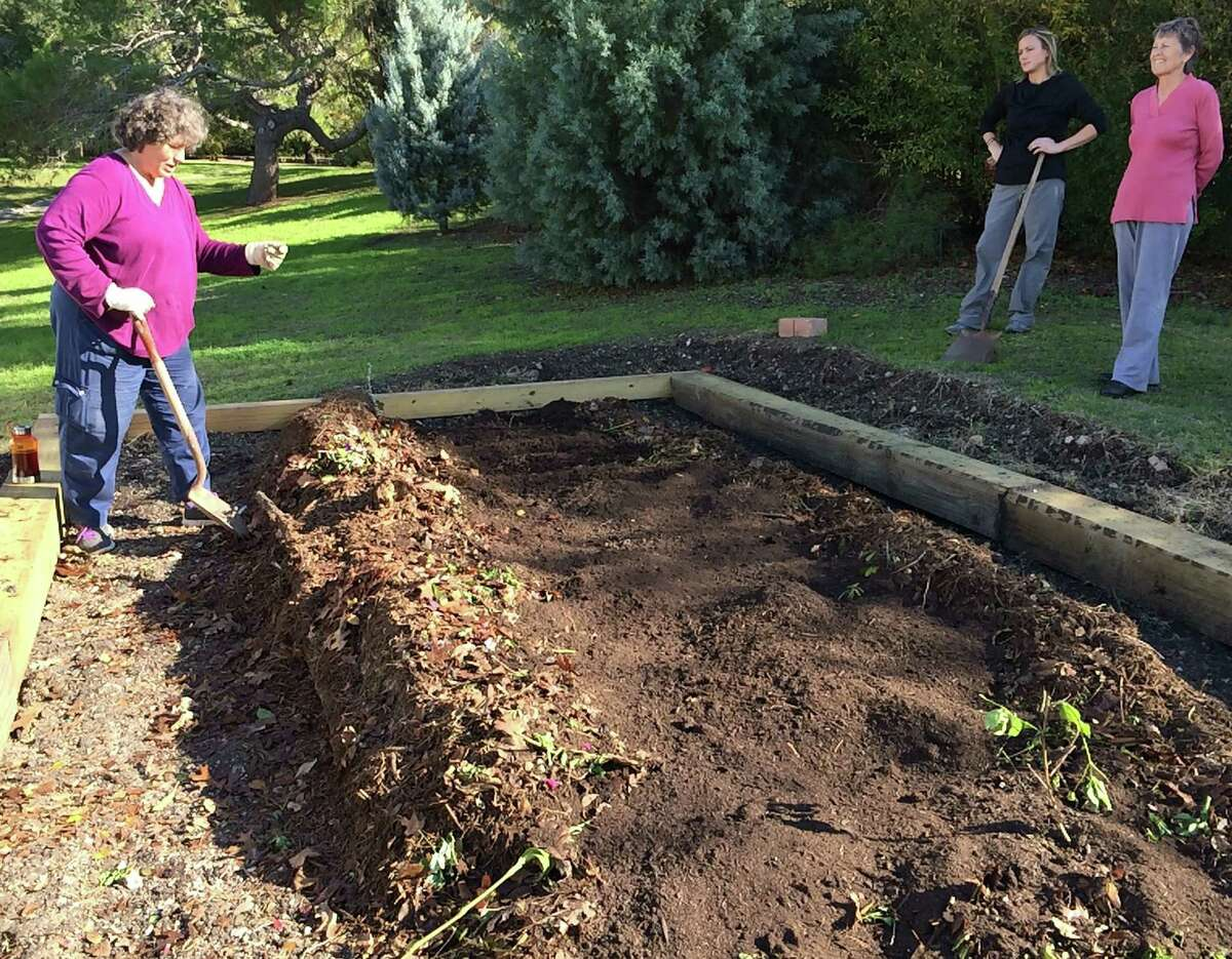 Standing beside a newly built Hügelkultur (hill mound), gardener Rachel Cywinski explains how soil-covered green and brown materials - such as leaves, flowers and tree branches - will break down over time, enriching the garden soil while preserving soil moisture.