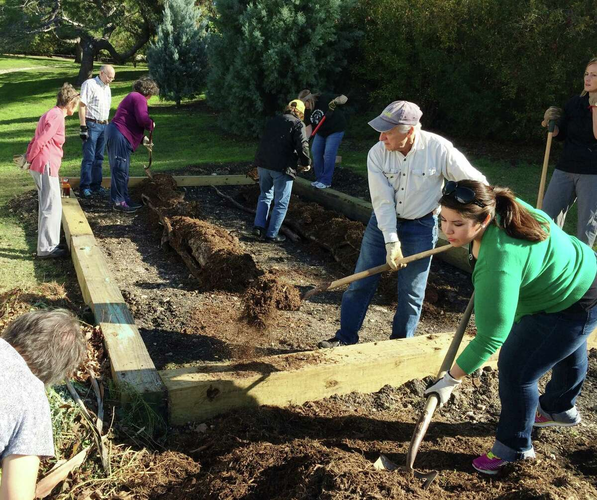 In creating a Hügelkultur (hill mound) garden, participants in a recent class at the San Antonio Botanical Garden shovel alternating layers of compostable material and soil to create a raised bed.