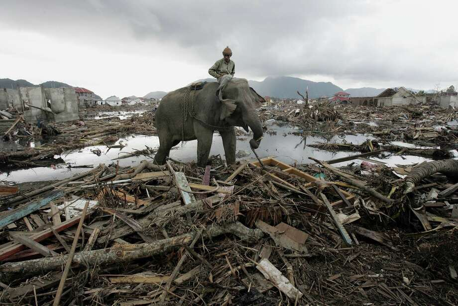 An elephant is used to remove debris in Banda Aceh after the deadly earthquake and tsunami that hit Indonesia 10 years ago. Children who survived the disaster are still feeling its effects. Photo: Eugene Hoshiko / Associated Press / AP