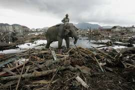 An elephant is used to remove debris in Banda Aceh after the deadly earthquake and tsunami that hit Indonesia 10 years ago. Children who survived the disaster are still feeling its effects.
