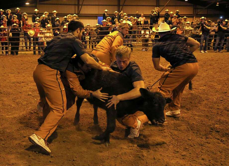 calf scramble essay Comparison: beowulf, grendel, and robin hood essay - has someone ever went out of their way to help you in the summer of 2012, i won a calf in the snake river stampede calf scramble.