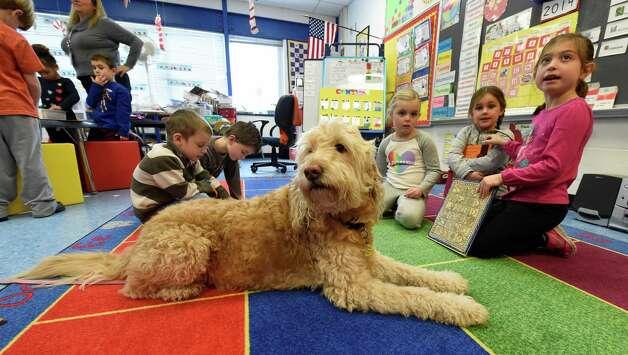 Service Dog Training Schenectady