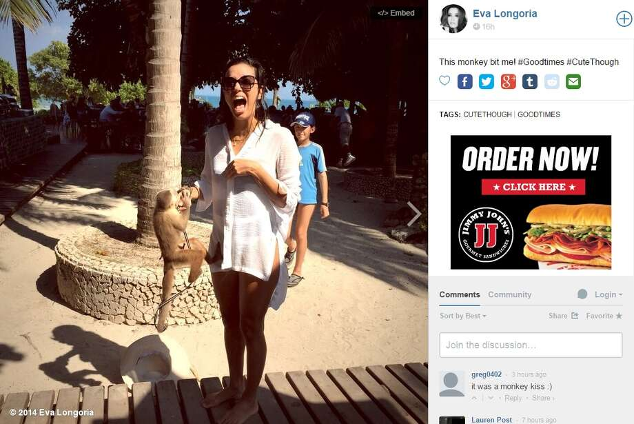 Here are screen grabs of posts regarding Eva Longoria's encounter with a monkey. Photo: Twitter/Instagram