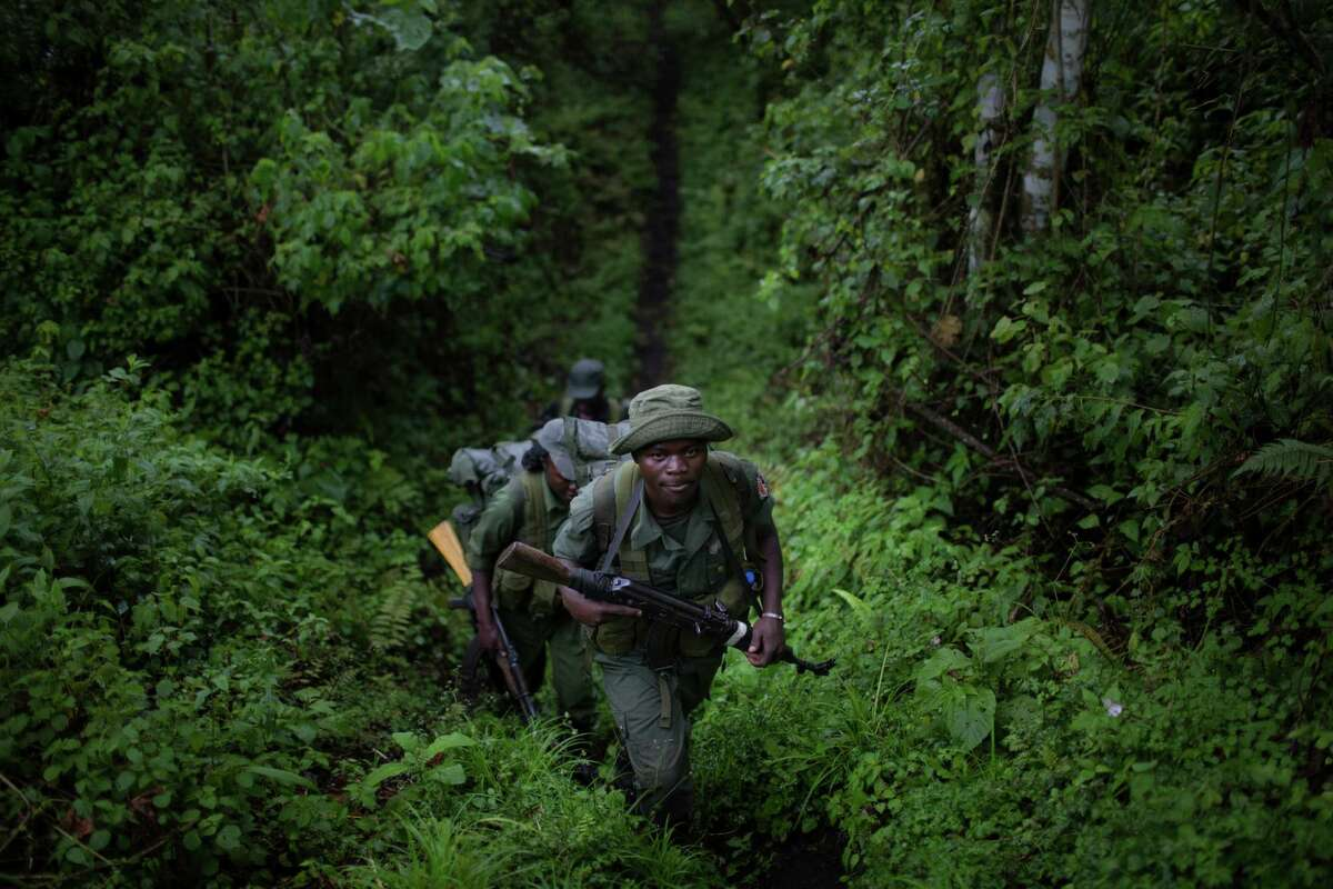 """Park rangers hike down from their outpost on the Nyiragongo volcano in the Virunga National Park, where environmentalists are opposing oil drilling, in the Democratic Republic of Congo, Oct. 8, 2014. Much like the fight over drilling on federal lands in the U.S., the struggle over oil exploration in Africaé¢Ã©""""é´s national preserves is a classic quandary, pitting economic development against environmental preservation. (Uriel Sinai/The New York Times)"""