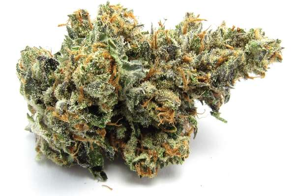 L.A. Confidential: DNA Genetics' veganic-grown cut of the gnarly indica took 2nd place in the Los Angeles Medical Cannabis Cup 2014.