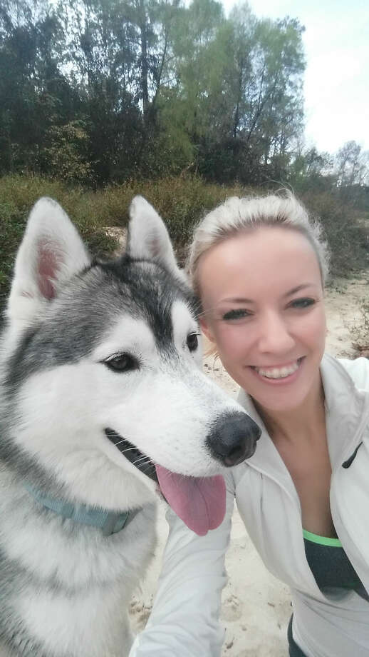Lisa Landes of Spring is asking for the return of her Siberian husky Koda, adopted at the SPCA after he wandered from his back yard, Dec. 17, 2014. (Photo courtesy of Lisa Landes)