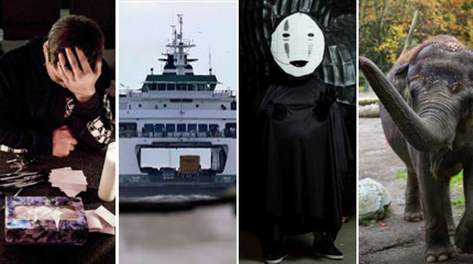 Here's our list of top failures in Seattle and the Northwest this year. Not all the failures were any one person's or group's failure, but failures all the same. And, some of these failures were more on the ridiculous side than serious, but they made noise.