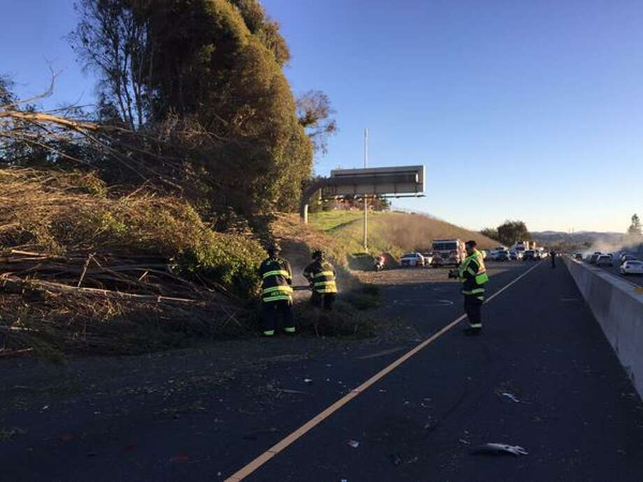 High winds blew over a large tree across Interstate 80 in Vallejo Tuesday Dec. 30, 2014. Traffic was blocked in both directions for nearly an hour. Photo: Courtesy / California Highway Patrol / ONLINE_YES