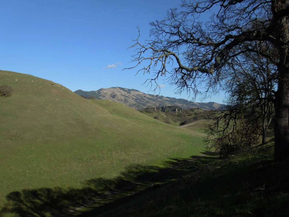 The view from Buckeye Hill at Shell Ridge, a view down the Briones-to-Mount Diablo Trail to the arrow spires of Castle Rocks -- with more geologic formations in the area -- and beyond to Mount Diablo State Park