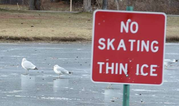 Sea gulls area able to walk on the thin ice a the Crossings at Colonie Friday afternoon, Jan. 2, 2015, in Colonie, N.Y.   (Skip Dickstein/Times Union) Photo: SKIP DICKSTEIN