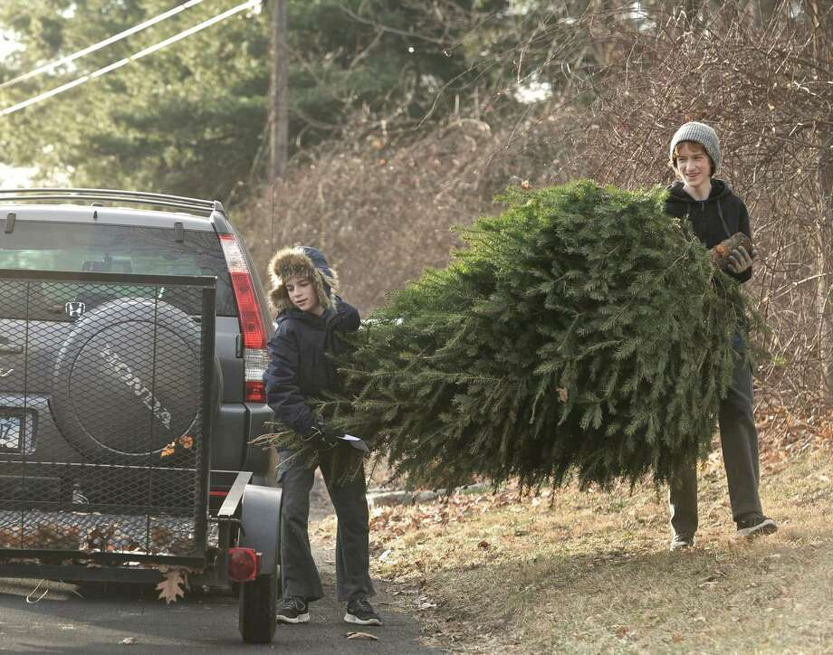 Brothers Aiden Fitton, 13, left, and Rory Fitton, 17,of Brookfield, carry a christmas tree to a trailer attached to their dad's car during a Boy Scout Troop 5 fundraiser on Saturday, January 3, 2015, in Brookfield, Conn. Troop 5, of Brookfield, is running a christmas tree recycling program, for a donation the scouts will collect the tree and mulch it. Both brothers are members of Troop 5. Photo: H John Voorhees III / The News-Times