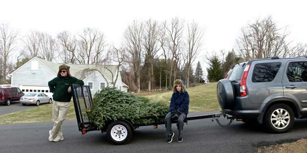 Christmas Tree Recycling Greenwich : Brookfield boy scouts collect trees around town