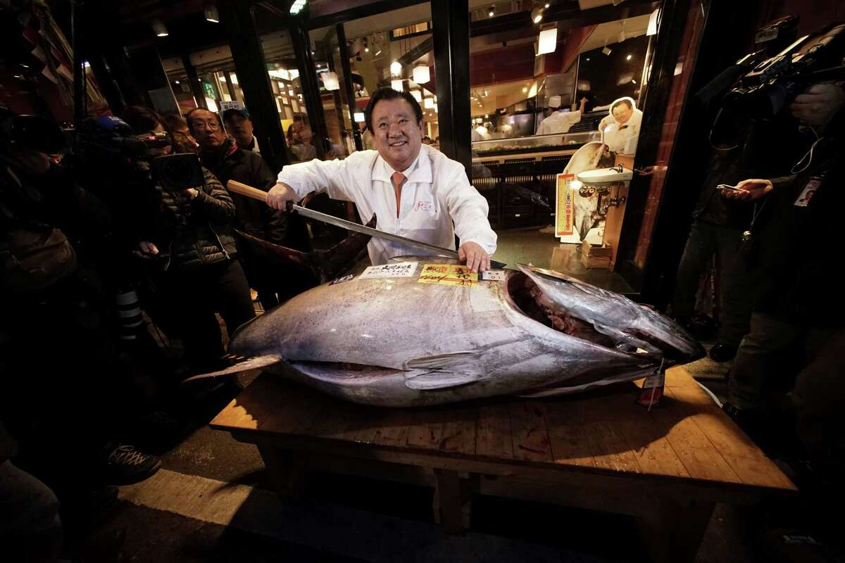 FILE-- Kiyoshi Kimura, president of Kiyomura Co., poses a bluefin tuna at his Sushi Zanmai restaurant near Tsukiji fish market in Tokyo, Monday, Jan. 5, 2015. The world's Pacific bluefin tuna won something of a reprieve Friday, when tuna-fishing countries reached an agreement to gradually rebuild severely depleted stocks while still allowing nations like Japan to catch and consume the delicacy.
