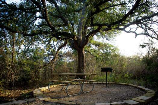 Sun falls through the trees at a picnic area at Government Canyon State Natural Area in San Antonio, Tx. on Sunday, January 4, 2014. San Antonio City Council will soon vote on whether or not to annex additional lands in the property mid January. Photo: Matthew Busch, For The San Antonio Express-News / © Matthew Busch
