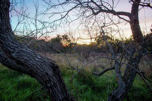 The sun sets over a small grassland area at Government Canyon State Natural Area in San Antonio, Tx. on Sunday, January 4, 2014. San Antonio City Council will soon vote on whether or not to annex additional lands in the property mid January. Photo: Matthew Busch, For The San Antonio Express-News / © Matthew Busch