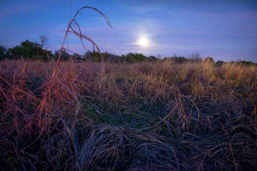 A full moon rises over a patch of winter grass at Government Canyon State Natural Area in San Antonio, Tx. on Sunday, January 4, 2014. San Antonio City Council will soon vote on whether or not to annex additional lands in the property mid January. Photo: Matthew Busch, For The San Antonio Express-News / © Matthew Busch