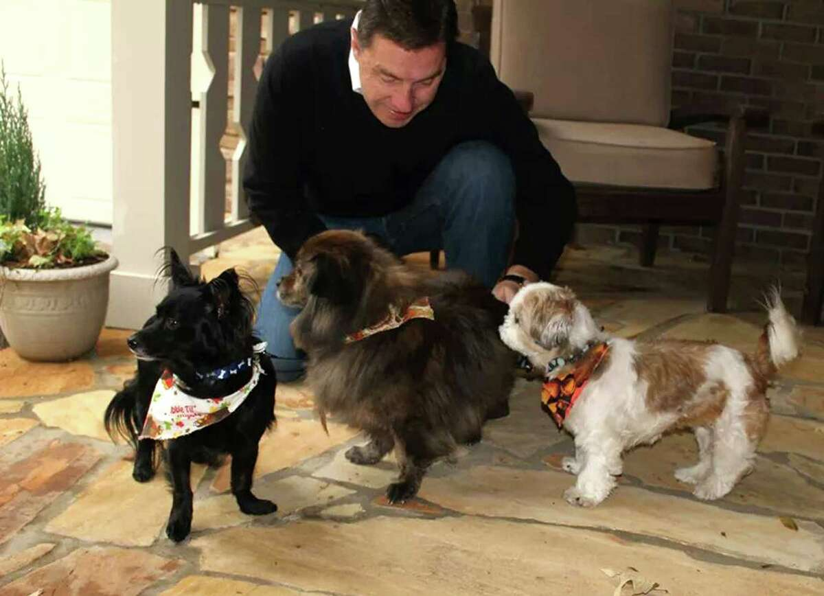 Click through the slideshow for a few hotels where pets can stay free, according to tripswithpets.com. Aloft Hotels : Welcomes dogs up to 40 pounds with no pet fee. Offers special bed, bowl, and doggie bag with treats and toys. More details.