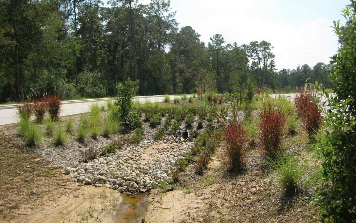 Birnamwood Drive includes a bioswale located between two sets of roadway lanes instead of a traditional raised median.
