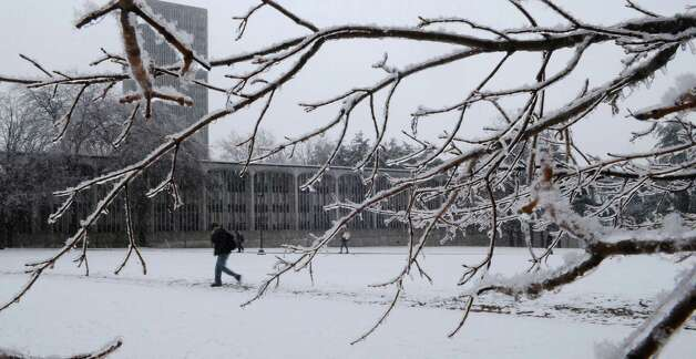 Times Union staff photo by Paul Buckowski       Ice and snow cover the tree branches as students make their way to and from class on the campus of the University at Albany. Photo: Paul Buckowski / Albany Times Union