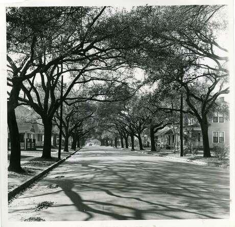 POST Bayland   HOUSTON HEIGHTS 1956 Bayland Avenue -- Houston 2/21/56
