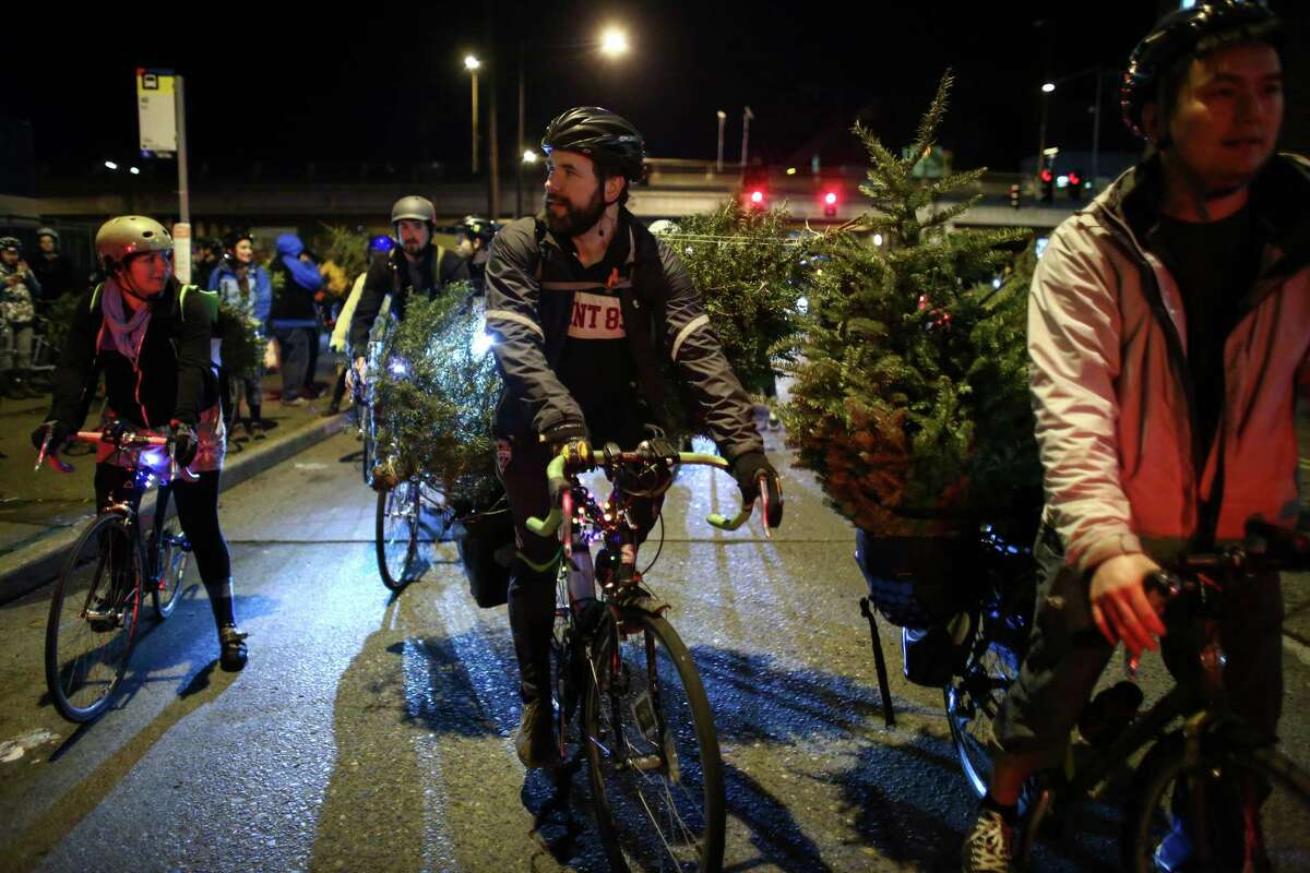 Cyclists ride through Ballard with their trees on their way to Golden Gardens Beach Park.