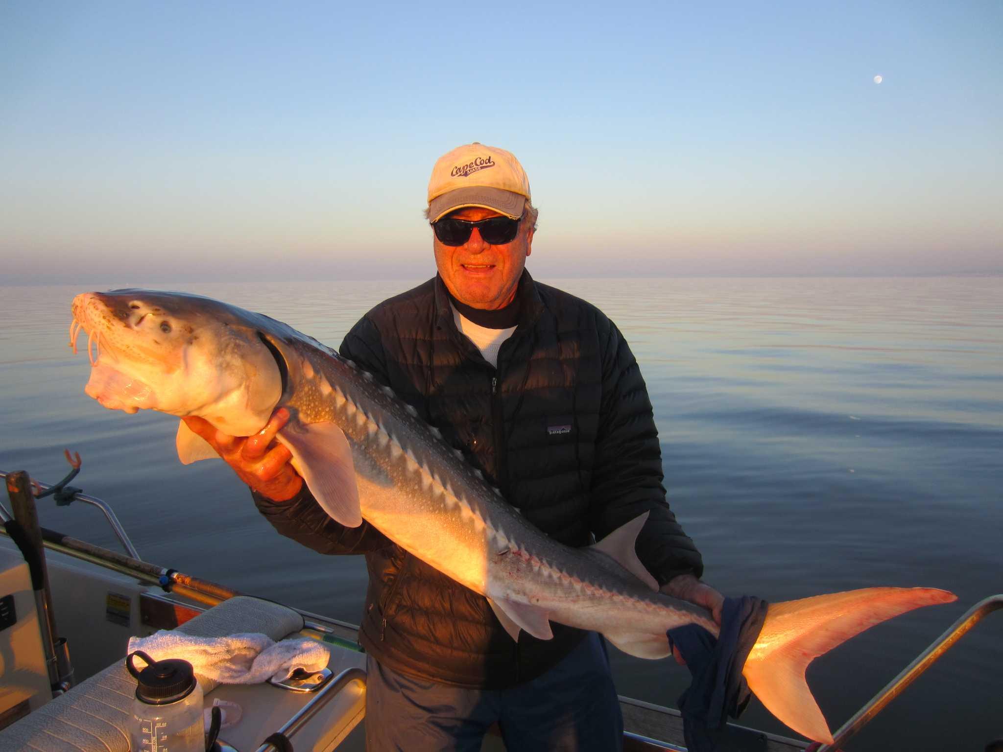 Rains improve bay fishing conditions san francisco chronicle for San francisco fishing
