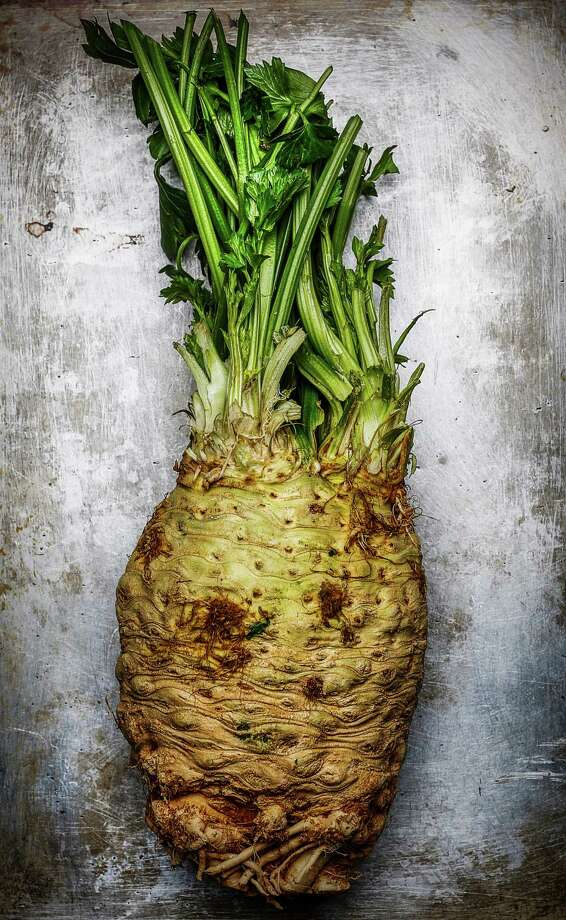 You can puree celery root or use it in salads or chicken pot pie, among other possibilities. Photo: Russell Yip / The Chronicle / ONLINE_YES