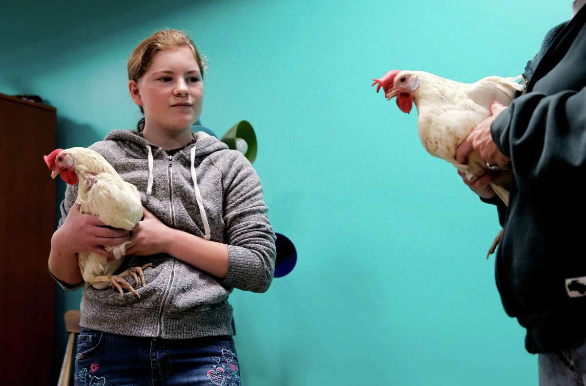 Ellen Rayl, 14 and her mother Charleen hold their two rescued chickens they are adopting and bringing home to San Bruno, from the San Francisco, Calif. SPCA on Saturday January 10, 2015, as animal rights activists celebrate the new California laws passed to protect egg laying chickens from inhumane conditions.