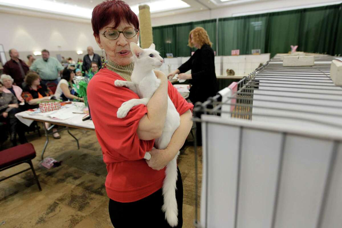 Linda Galloway carries an oriental long hair out of the competition rings during the Houston Cat Show at Humble Civic Center on Saturday, Jan. 10, 2015, in Humble.