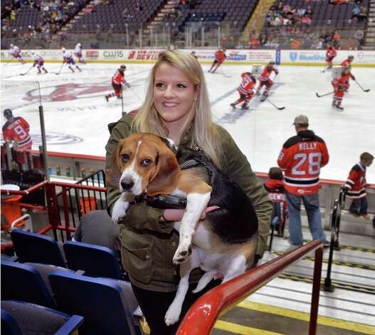 Elaina Slater of Albany carries her dog Melo to her seat during the fifth annual OPucks and PawsO night at Times Union Center as fans bring their dogs to watch the Bridgeport Sound Tigers battle the Albany Devils  Saturday Jan. 10, 2015, in Albany, NY.  (John Carl D'Annibale / Times Union) Photo: John Carl D'Annibale / 00030087A