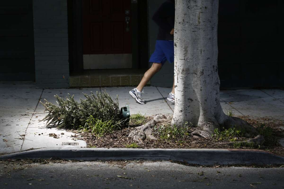 A discarded Christmas tree lies on the sidewalk in Noe Valley on Tuesday Jan. 06, 2015 in San Francisco, Calif.