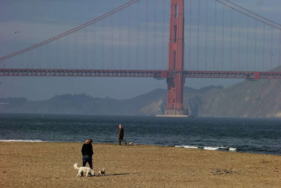 Dogs and humans enjoy the bay air on East Beach at Crissy Field, part of the Golden Gate National Recreation Area. Photo: Brant Ward, The Chronicle