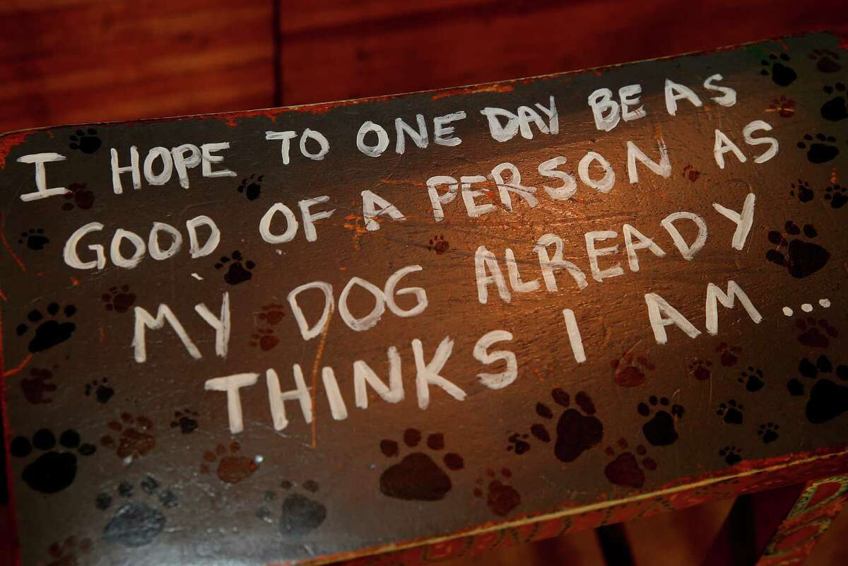 In an employee area of Lagunitas Brewery, a saying on a seat speaks to their special appreciation for dogs in Petaluma, Calif. Craft brew sensation Lagunitas Brewing Company has dropped its trademark infringement lawsuit against fellow brewer Sierra Nevada Brewing Wednesday January 14, 2015.
