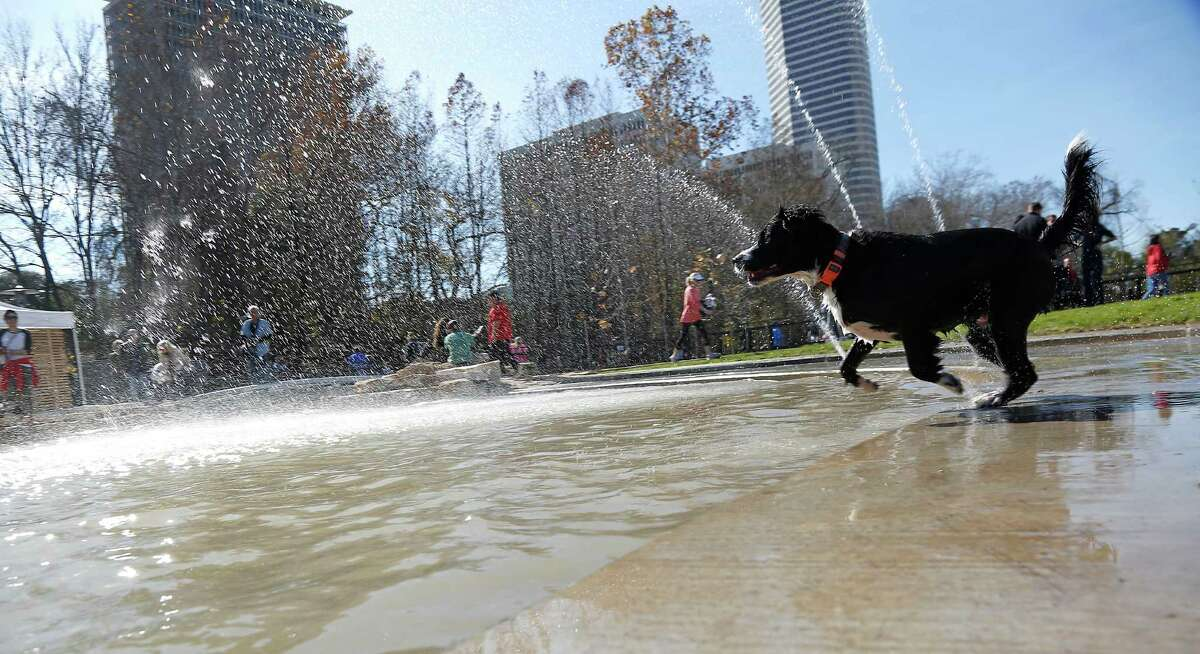 The Johnny Steele Dog Park off Allen Parkway opened on Saturday, Jan. 17, 2015 in Houston.