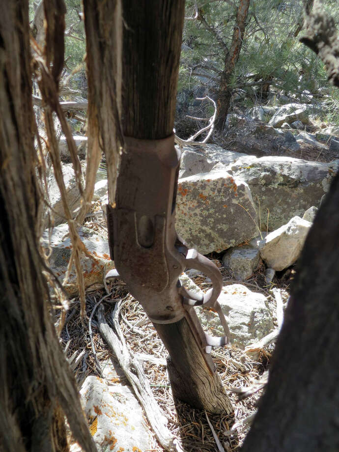 This image provided by the Great Basin National Park shows a Winchester Model 1873 rifle found in Nevada.   The gun made in 1882 was found propped against a juniper tree in Great Basin National Park in November during an archaeological survey.  Park spokeswoman Nichole Andler says officials may never know how long the rifle had been standing there, but it's possible it had been left there in the 1880s.  (AP Photo/National Park Service) Photo: Associated Press / National Park Service